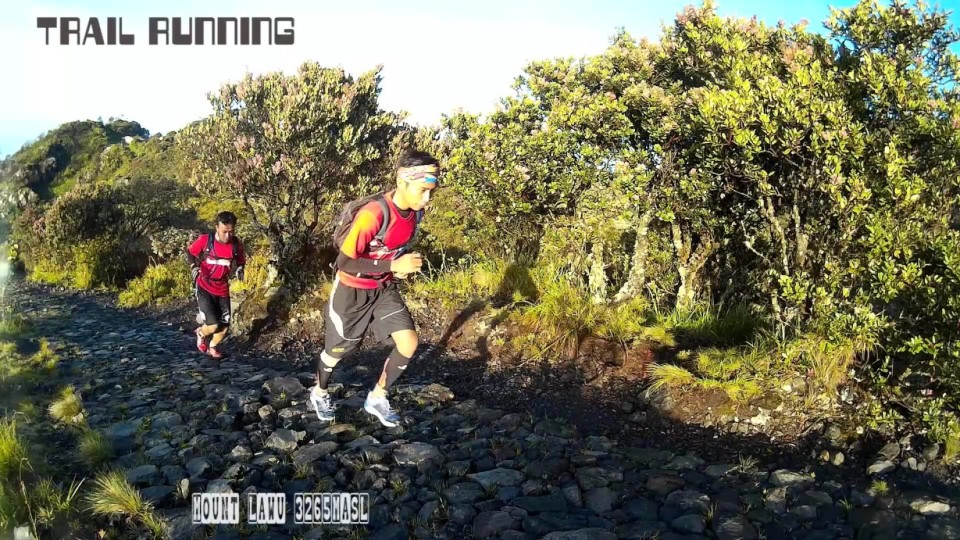Mount Lawu Trail Running